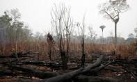 Le groupe de plus de 14.000 scientifiques estime que les gouvernements ont de manière systématique échoué à s'attaquer aux causes du changement climatique, «la surexploitation de la Terre». Ph : DR