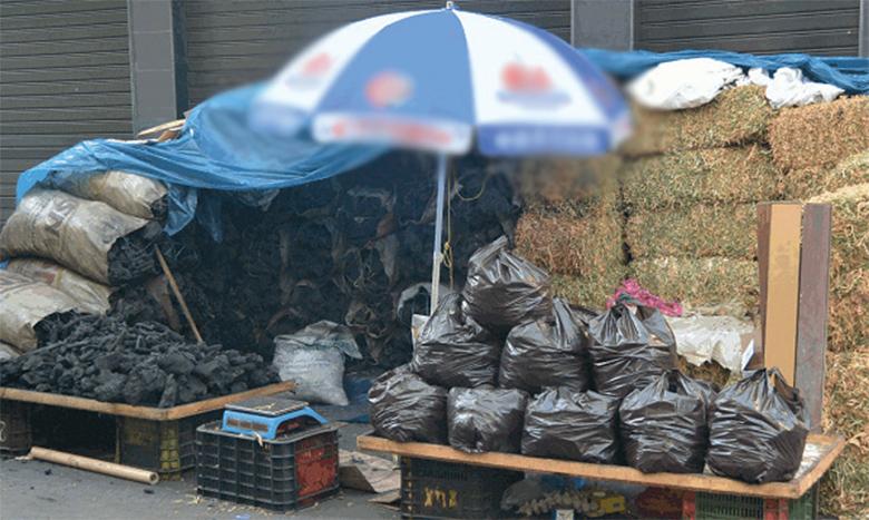 Aïd Al-Adha : Le Centre anti-poison et de pharmacovigilance met en garde contre les effets nocifs du charbon