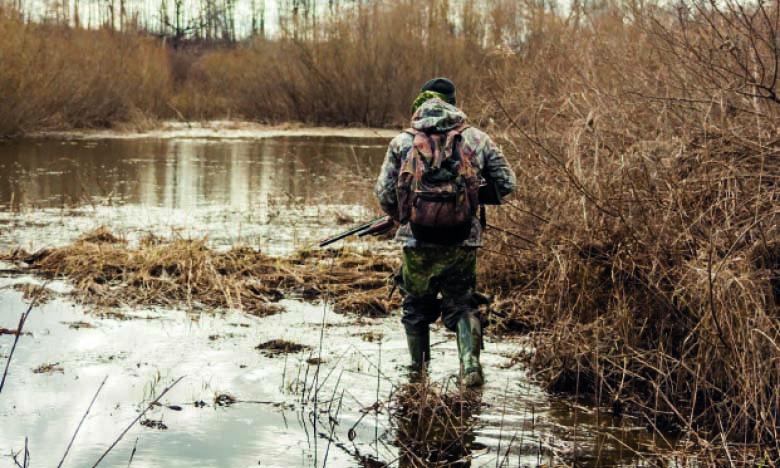 Ouverture de la chasse à la tourterelle