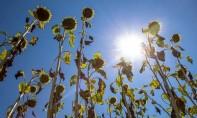 La DGM prévoit pour la journée de ce mercredi, un temps stable avec ciel clair à peu nuageux ailleurs. Ph : DR