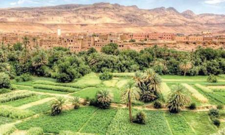 Le retard en termes de productivité à Drâa-Tafilalet s'explique notamment par l'importance des modes d'exploitations agricoles traditionnels par rapport aux modes modernes.