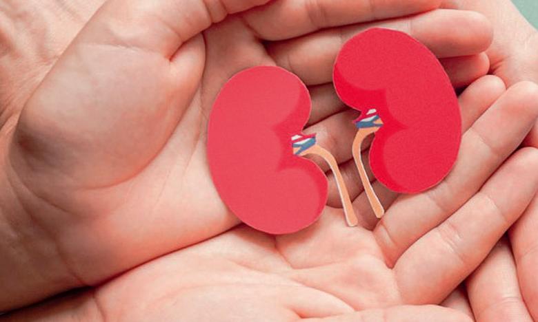 Le don et la transplantation d'organes au plus bas à cause  de la pandémie de la Covid-19