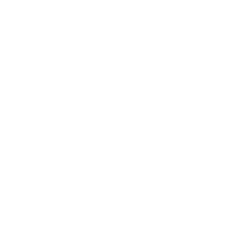 Automobile