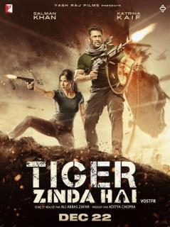 film  TIGER ZINDA HAI